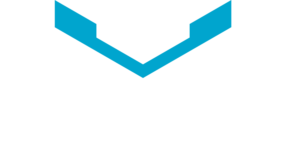 Vermijl Car Detail